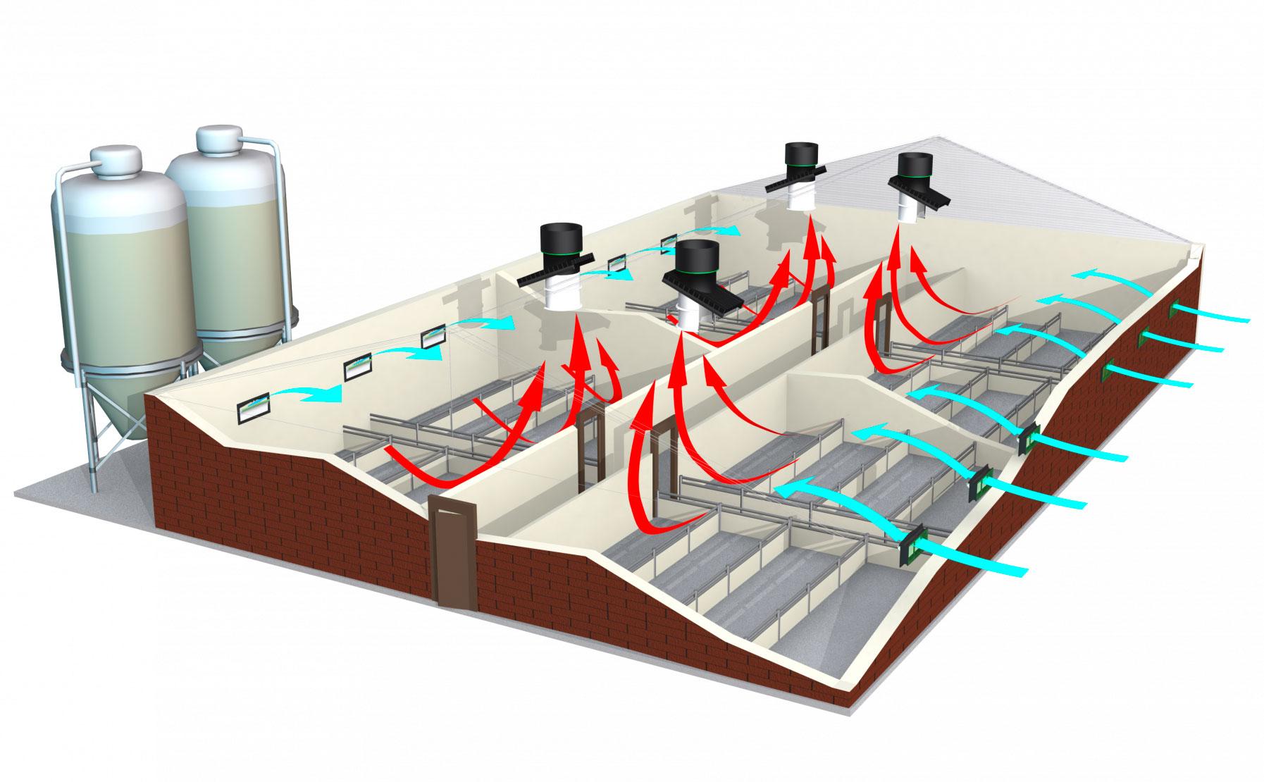 Вентиляція та охолодження повітря у свинарниках та корівниках